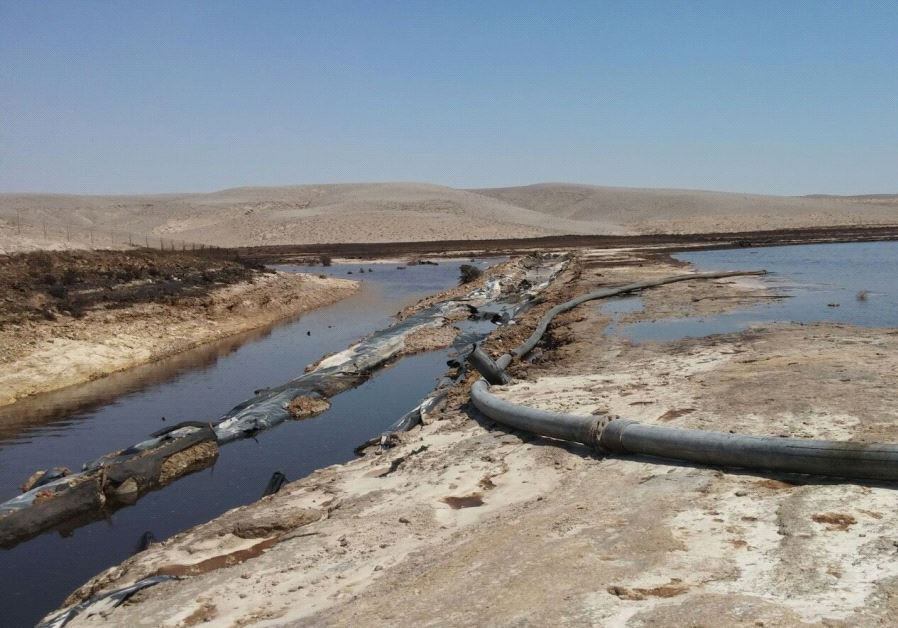 Remediation of Rotem Ampert's polluting plant